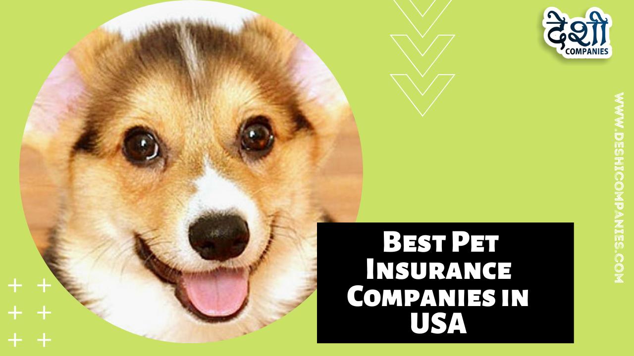 Best Pet Insurance Companies in USA